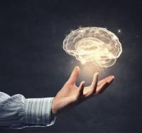Bekijk details van Universiteit van Beuningen | Hersenonderzoek: van sciencefiction tot realiteit