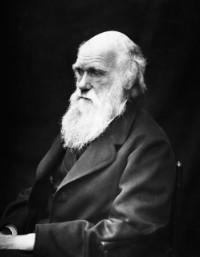 Bekijk details van Universiteit van Beuningen | Het conflict tussen Darwin en de kerk