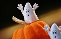 Bekijk details van Digi Playground | Stop Motion Halloween | 6+